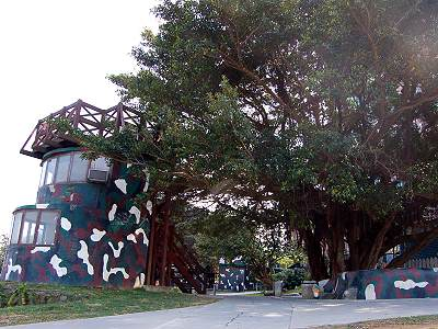 Leisure Cycling Tour in Bali – Old Banyan Bunker (Tourist Attraction)