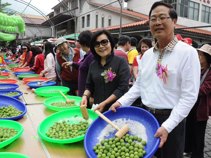 2012 Plum Season in Nantou County Has Already Kicked off